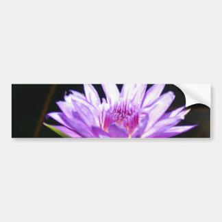 Nénuphar pourpre de Lotus Autocollant De Voiture