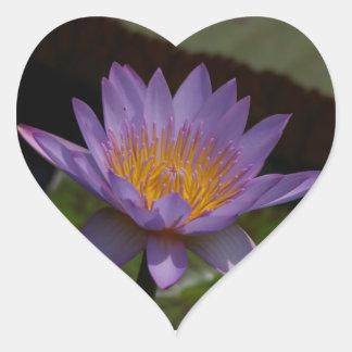 Nénuphar pourpre de Lotus Sticker Cœur
