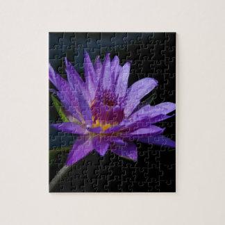 Nénuphar pourpre Lotus Puzzles