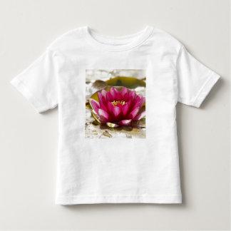 Nénuphar T-shirt Pour Les Tous Petits