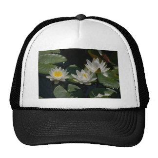 Nénuphars de Lotus blanc Casquette