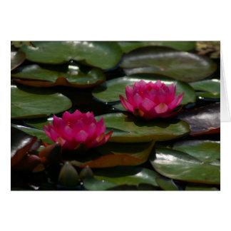 Nénuphars magenta de Lotus Carte De Vœux