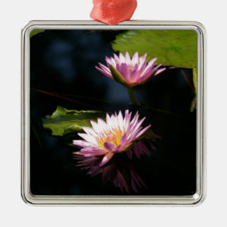 Nénuphars pourpres roses de Lotus Ornement Carré Argenté