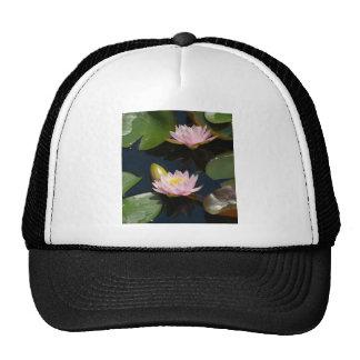 Nénuphars roses de Lotus Casquette De Camionneur