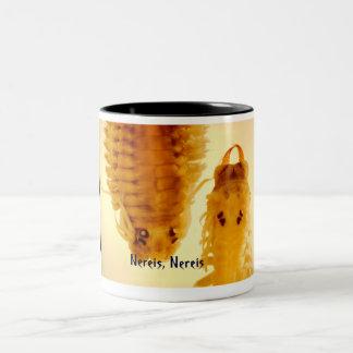 Nereis, tasse de Nereis