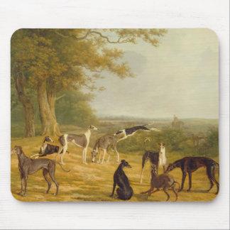 Neuf lévriers dans un paysage (huile sur la toile) tapis de souris
