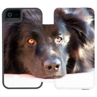 newfoundland-3 coque-portefeuille iPhone 5 incipio watson™