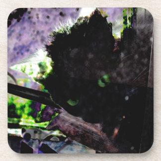 Nid • Oeuf • Kitty Sous-bocks