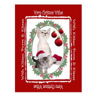 Noël chaud de chaton souhaite la carte postale