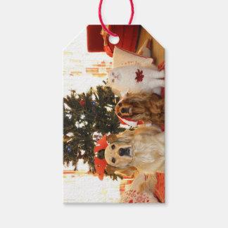 Noël choie les étiquettes mignonnes de cadeau