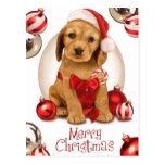Noël de cocker cartes postales