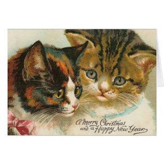 Noël de deux minous cartes de vœux