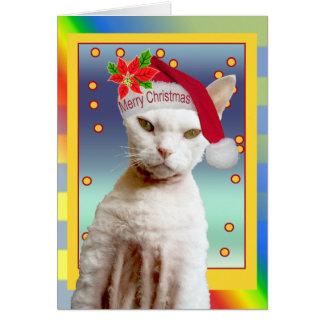 Noël de Meow de Père Noël de chat de la carte   Re
