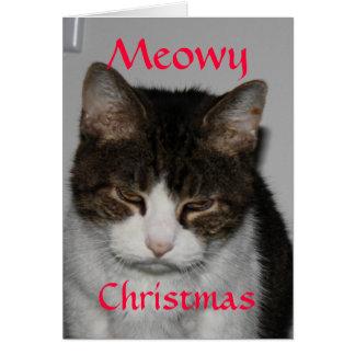 Noël de Meowy - carte de voeux des vacances du