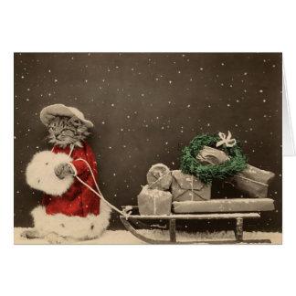Noël de Meowy Cartes