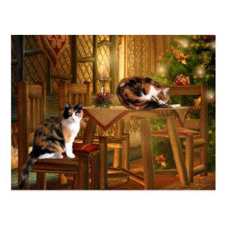 Noël de minou de calicot cartes postales