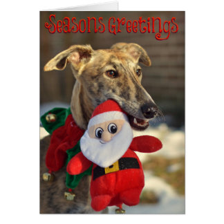 Noël de Sami Carte De Vœux
