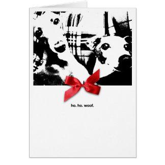 Noël d'Iggy Ho. Ho. Trame Carte De Vœux