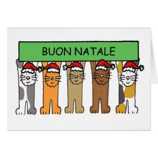 Noël italien avec des chats dans des chapeaux de carte de vœux