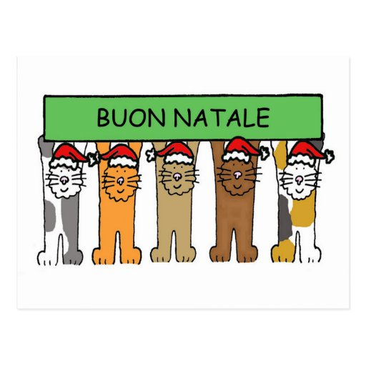 Noël italien avec des chats dans des chapeaux de carte postale