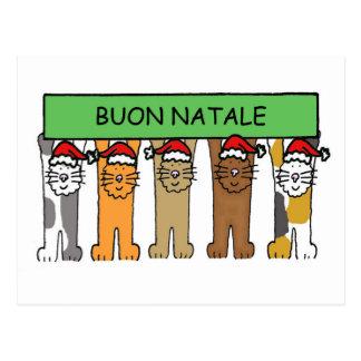 Noël italien avec des chats dans des chapeaux de cartes postales