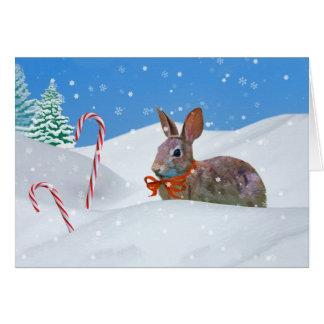Noël, lapin, neige, sucres de canne carte de vœux