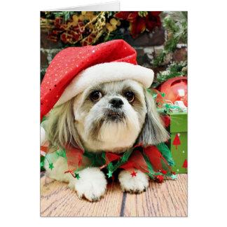 Noël - Shih Tzu - truc Cartes