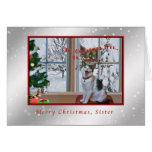 Noël, soeur, chat de chant, neige cartes