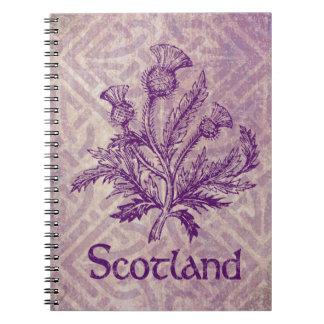 Noeud celtique pourpre de chardon écossais carnets à spirale