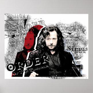 Noir de Sirius Posters
