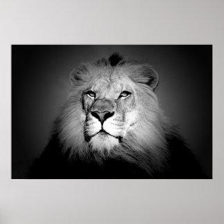 Noir et blanc/copie d'affiche lion de BW - visage