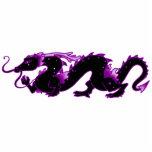 Noir et pourpre de dragon de dragon photos en relief
