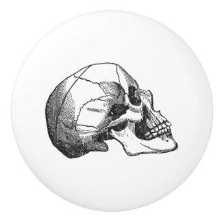 noir vintage d'illustration de profil de crâne