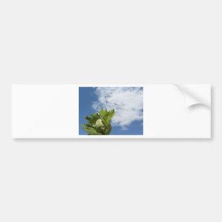 Noisette verte fraîche simple contre le ciel bleu autocollant de voiture