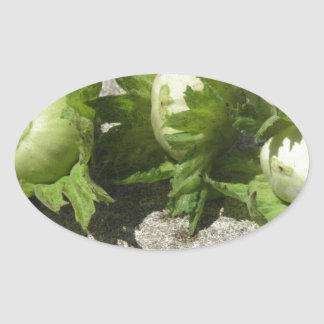 Noisettes vertes fraîches sur le plancher sticker ovale