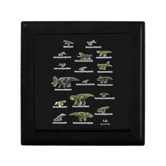 Noms de dinosaures petite boîte à bijoux carrée