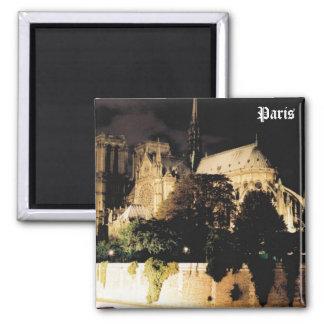 Notre Dame la nuit.  Paris, France Magnet Carré