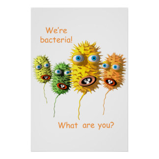 Nous sommes des bactéries poster