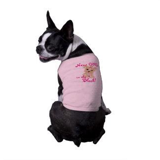 Nouvelle fille t-shirt pour chien