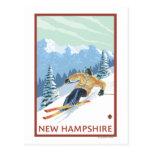Nouvelle scène de skieur de HampshireDownhill Carte Postale