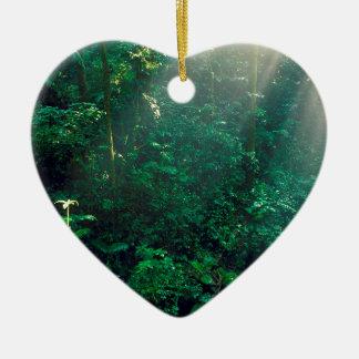 Nuage Costa Rica de Monteverde de forêt Ornement Cœur En Céramique