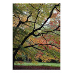 Nuances d'automne, arborétum de Westonbirt Faire-part Personnalisé