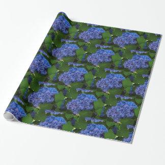 Nuances de bleu - l'hortensia bleu papier cadeau