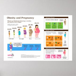 """Obésité et grossesse 36"""" x 24"""" affiche poster"""