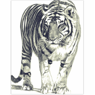Objet 3D Tigre Tiger Magnet Photo Sculpture
