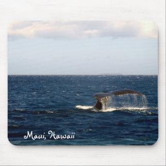 Observation de baleine de Maui Hawaï Tapis De Souris