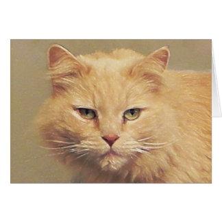 Obtenez bien bientôt : Carte de chat de Tom