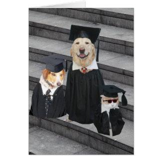Obtention du diplôme drôle de chien carte de vœux