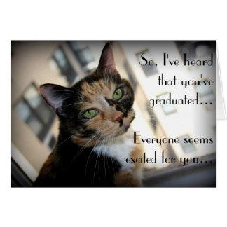Obtention du diplôme heureuse de chat distant cartes