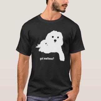 Obtenu maltais ? t-shirt